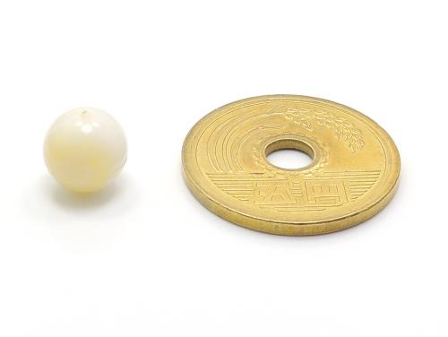 パワーストーン天然石ビーズ粒売り ゴールデンシャコガイAAAA8ミリ 魔除・厄除 ハンドメイド・手作りアクセサリー用 (11696)